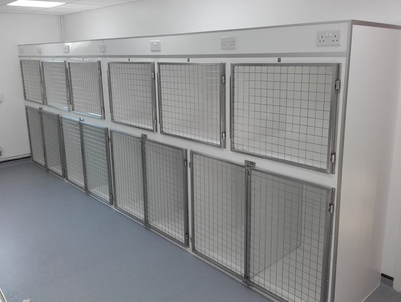 veterinary recovery cages